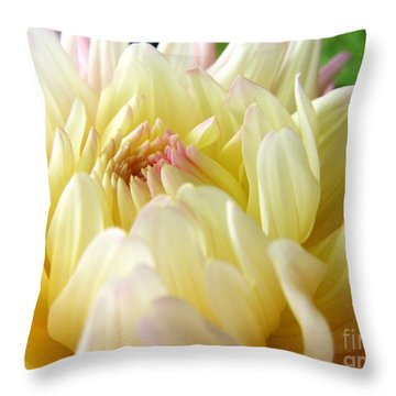 Throw Pillow featuring the photograph Yellow Dahlia by Margie Amberge
