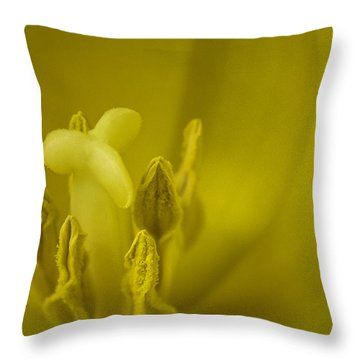 Throw Pillow featuring the photograph The Dance by Lucinda Walter