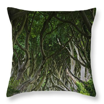 The Dark Hedges Throw Pillow