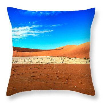 The Deadvlei Throw Pillow