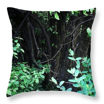 Throw Pillow featuring the photograph The Deep Dark Woods by Thomasina Durkay