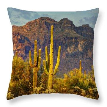 The Desert Golden Hour II  Throw Pillow