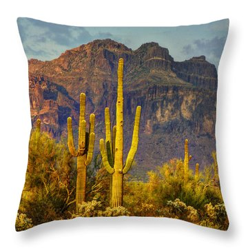 The Desert Golden Hour II  Throw Pillow