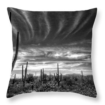 The Desert In Black And White Throw Pillow