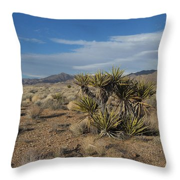 The Desert In Winter Throw Pillow
