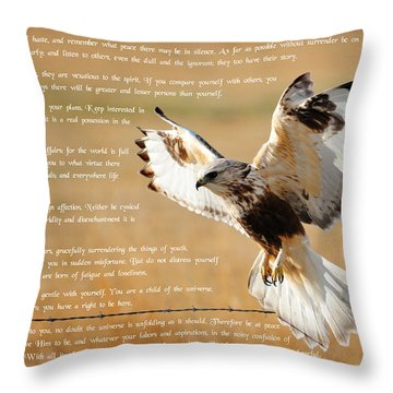 Throw Pillow featuring the photograph The Desiderata With Hawk by Greg Norrell