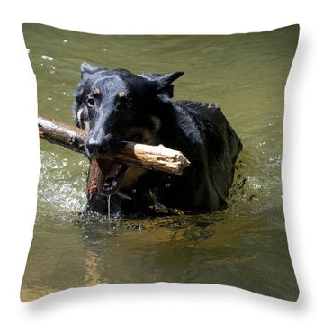 The Dog Days Of Summer Throw Pillow by Bill Cannon