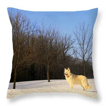 The Dog On The Hill Throw Pillow by Kay Novy