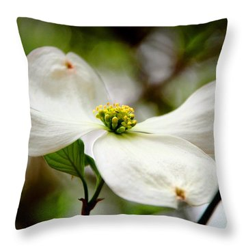 The Dogwood Throw Pillow