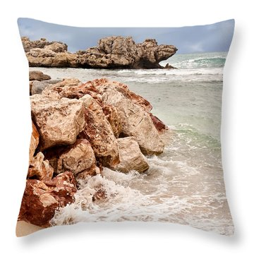 The Dragon Of Labadee Throw Pillow