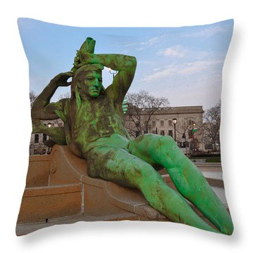 The Dry Season Throw Pillow by Bill Cannon