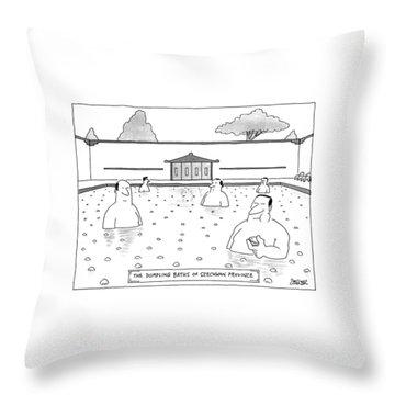 The Dumpling Baths Of Szechwan Province Throw Pillow