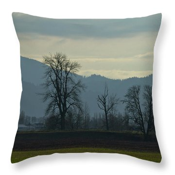 Throw Pillow featuring the photograph The Eagle Tree by Eti Reid