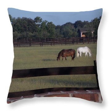 Throw Pillow featuring the photograph The Easy Life by John Glass