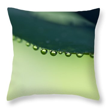 Throw Pillow featuring the photograph The Edge II by Priya Ghose