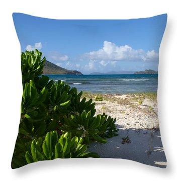 The Edge Of Paradise Throw Pillow