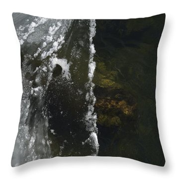 The Edge Throw Pillow by Randy Bodkins