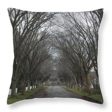 The Elm Arch Throw Pillow