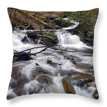 Elusive Conestoga Waterfall In Spring Throw Pillow
