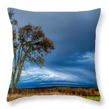 The End Of A Rainy Day Throw Pillow