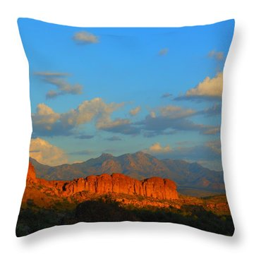 The Endangered West Throw Pillow