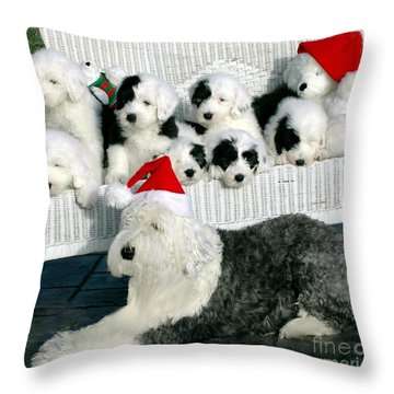 The Entire Family Throw Pillow by Kathleen Struckle