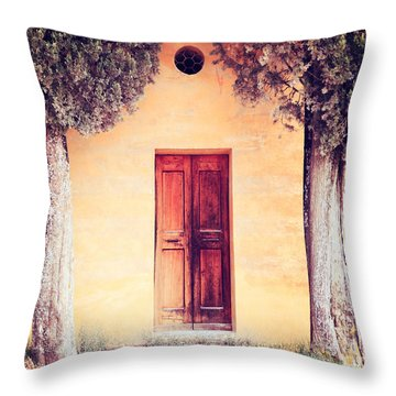 The Entrance Throw Pillow by Matteo Colombo
