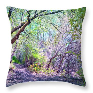 The Entrance Throw Pillow by Tara Turner