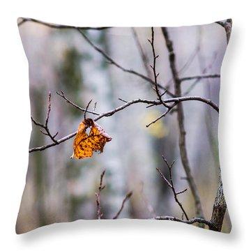 The Essence Of Autumn - Featured 3 Throw Pillow by Alexander Senin
