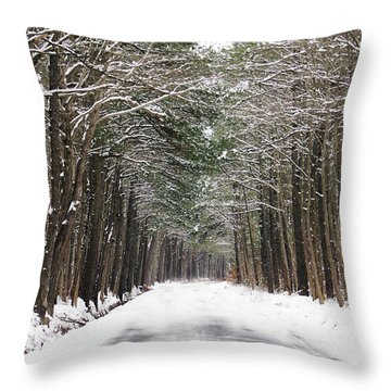The Evergreen Way Throw Pillow