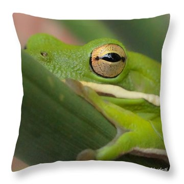 The Eye Has It Squared Throw Pillow by TK Goforth