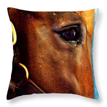 The Eye Of A Champion Da Hoss Throw Pillow
