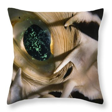 The Eye Of A Pufferfish Throw Pillow