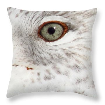 The Eye Of The Gull Throw Pillow