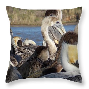 Throw Pillow featuring the photograph The Eyes Have It by John Glass