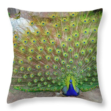 The Eyes Have It Throw Pillow by Jonah  Anderson