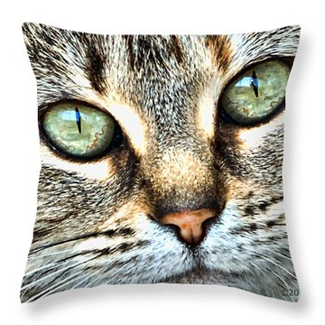 The Eyes Have It Throw Pillow by Kenny Francis
