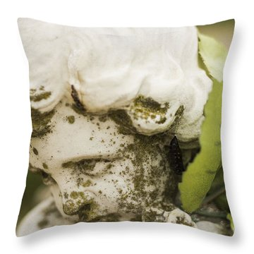 Throw Pillow featuring the photograph The Face Of An Angel by Amber Kresge