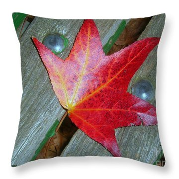 Throw Pillow featuring the photograph The Face Of Autumn by Leanne Seymour
