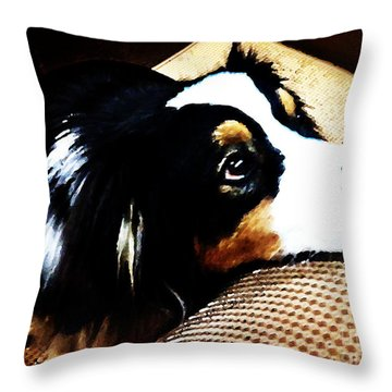 The Face Of Love Throw Pillow by Nancy E Stein