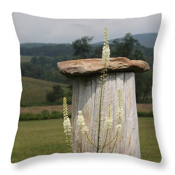 Fall Harvest Throw Pillow by Yvonne Wright