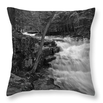 The Falls Throw Pillow by David Rucker