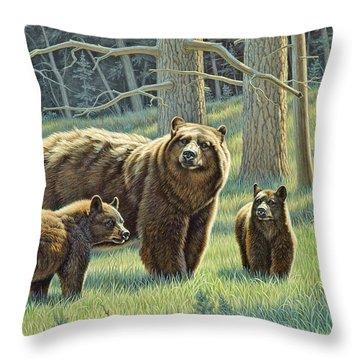 Bear Throw Pillows