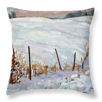 The Fence Line Throw Pillow by Phil Chadwick