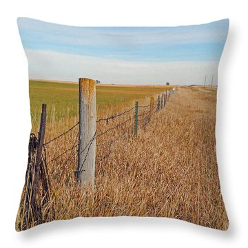 The Fence Row Throw Pillow by Mary Carol Story