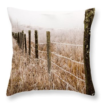The Fence Still Stands Throw Pillow