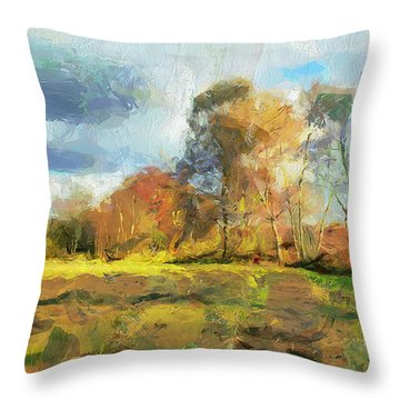 Throw Pillow featuring the painting The Field by Wayne Pascall