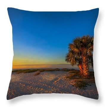 The Final Moments Throw Pillow