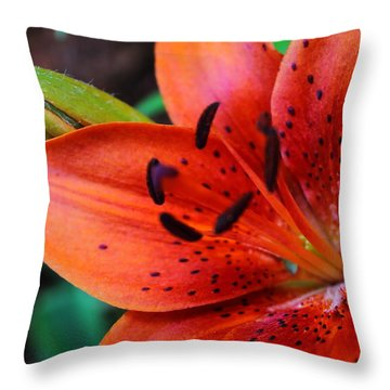 The First Lily Throw Pillow
