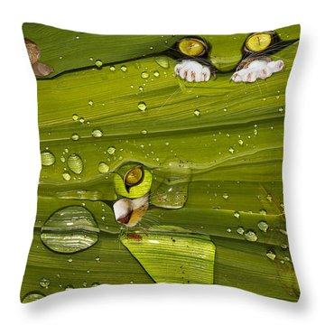 The First Rain Throw Pillow by Angela A Stanton